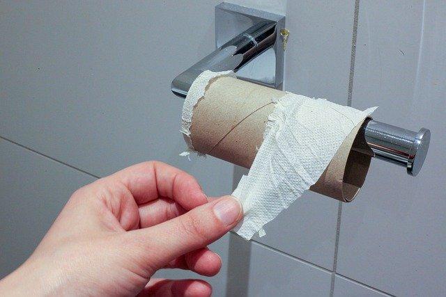 papier toilette sanibroyeur